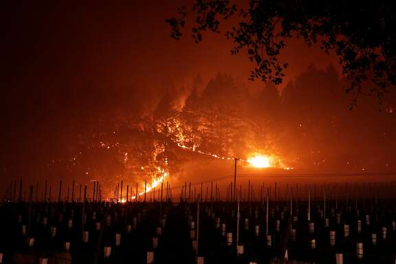 A grove of trees near Trinity Road glows as it burns near a vineyard after a mandatory evacuation was called in the area of Glen Ellen, Calif., on Wednesday, October 11, 2017. The Napa and Sonoma valleys continue to be under threat from several fires not yet under control and growing fears that strong winds might worsen the situation.