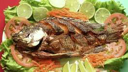 A whole fried tilapia is the centerpiece of the mojarra frita plate at Guajira Cuban Restaurant.