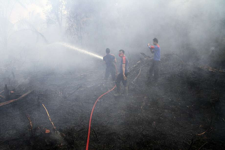 Firemen spray water in an attempt to extinguish bush fires on a peat land in 2014 in Siak Riau province, Indonesia. El Niño is blamed for more fires in Asia for adding 3 billion tons of carbon into the air. Photo: Rony Muharrman, Associated Press
