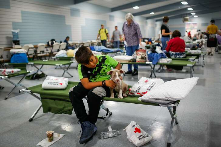 Evacuee Junior Gomez, 11, sits with his puppy Smoky, 2 months at a Red Cross shelter after evacuating his home with his parents following the Tubbs fire in Santa Rosa, Calif., on Monday, Oct. 9, 2017.
