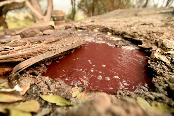 A bubbling underground river of wine flows away from a burned Paradise Ridge Winery in Santa Rosa, California on October 10, 2017. Firefighters encouraged by weakening winds were battling 17 large wildfires on Tuesday in California which have left at least 13 people dead, thousands homeless and ravaged the state's famed wine country. / AFP PHOTO / JOSH EDELSON        (Photo credit should read JOSH EDELSON/AFP/Getty Images)