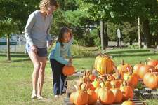 Remi Morello picks a pefect pumpking for carving with mom Jennifer from Wilton at the Annual Kiwanis Club of Wilton pumpkin sale at The Wilton Historical Society in Wilton Conn. on Thursday October 12, 2017