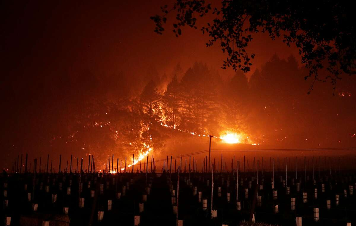 A grove of trees near Trinity Road glows as it burns near a vineyard after a mandatory evacuation was called in the area of Glen Ellen, Calif., on Wednesday, Oct. 11, 2017. The Napa and Sonoma valleys continue to be under threat from several fires not yet under control and growing fears that strong winds might worsen the situation.