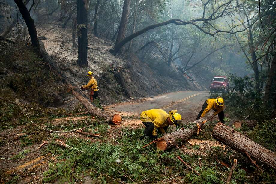 Fire fighters clear a downed tree from across Mt. Veeder Rd after flames from the Nuns fire moved through the Mt Veeder area in Napa on Oct. 11, 2017. Photo: Peter DaSilva, Special To The Chronicle
