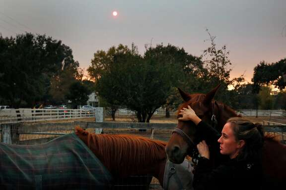 Dr. Emily Putt tries to calm an anxious horse as her friend retrieves tranquilizers to administer to it as they rescue two horses for an evacuation Oct. 11, 2017 in Sonoma, Calif. Putt has been working with her friends since Monday, when the fires broke out, to rescue animals that are being threatened by the fires.