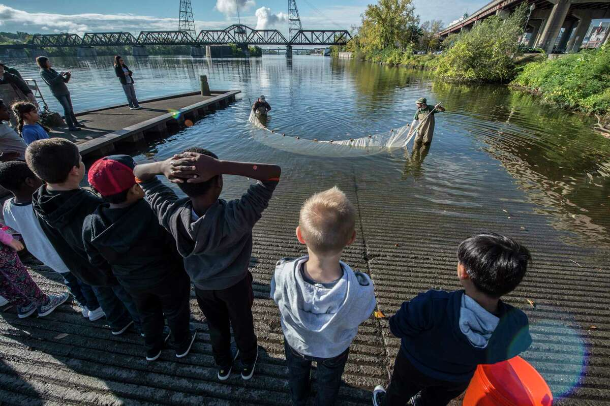 """Conservationists drag for river life as students from the Albany Montessori Magnet School line up on the side of Hudson River at the Corning Preserve to become """"scientists for the day"""" in the 15th annual Day in the Life of the Hudson and Harbor Thursday Oct. 12, 2017 in Albany, N.Y. Students up and down the Hudson River spend their time collecting and analyzing real data from the field during hands-on exploration of the Hudson River Estuary. (Skip Dickstein/Times Union)"""