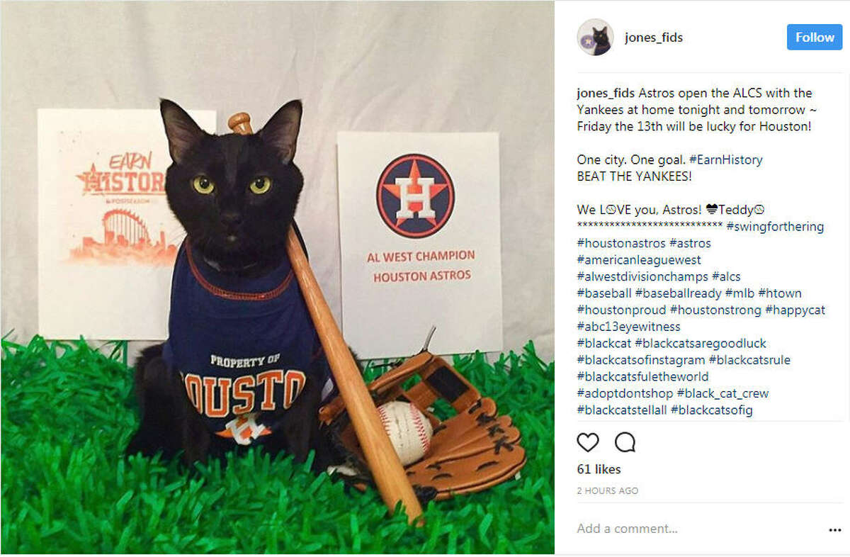 Astros fans cheer on their team on Instagram with the hashtag #EarnHistroy.Image source: Instagram