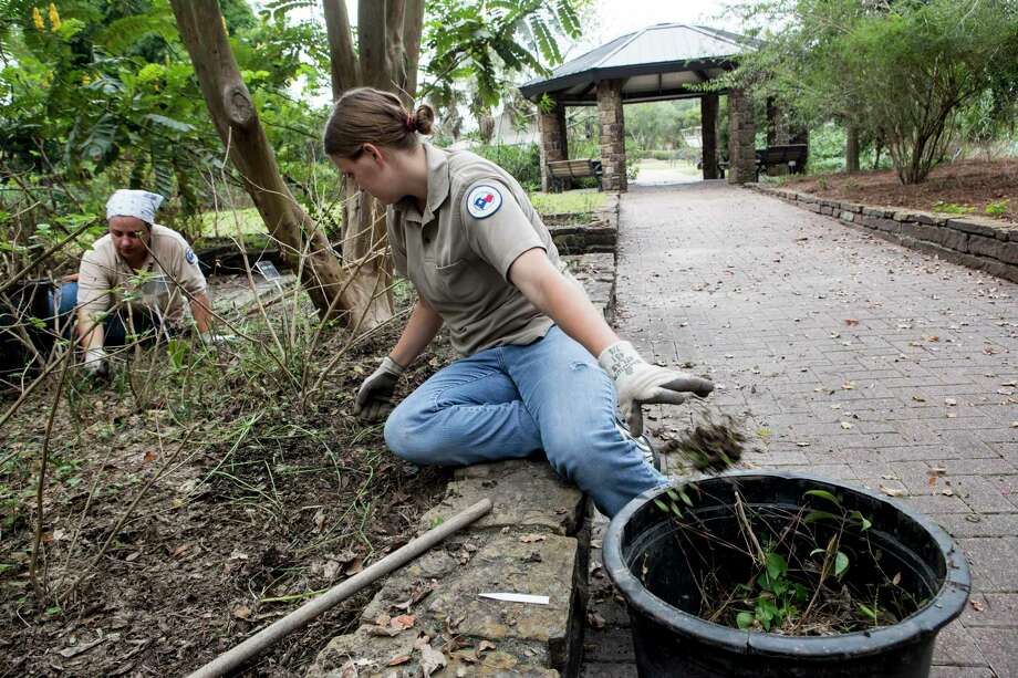 Jennifer Garrison, left, and Melodie Hill work on cleaning silt an debris from the perineal tiers gardens at Mercer Arboretum and Botanic Gardens on Thursday, Sept. 28, 2017, in Spring. Harvey devastated the gardens, washing away much of the foliage. ( Brett Coomer / Houston Chronicle ) Photo: Brett Coomer, Staff / © 2017 Houston Chronicle