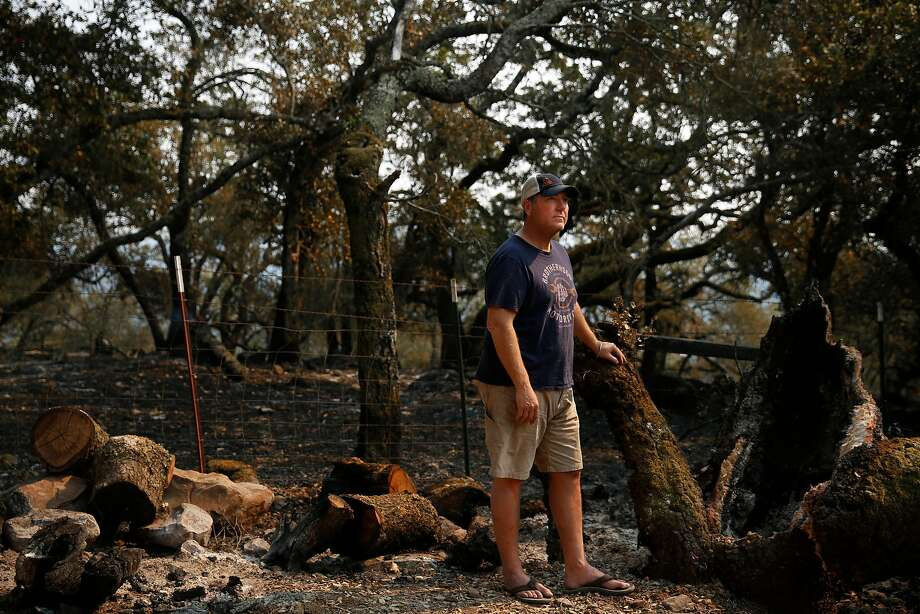 Jeffrey Mayo stands next to a smoking tree stump where a tree burned and fell, barely missing his home in Glen Ellen. | Photo: Leah Millis, The Chronicle