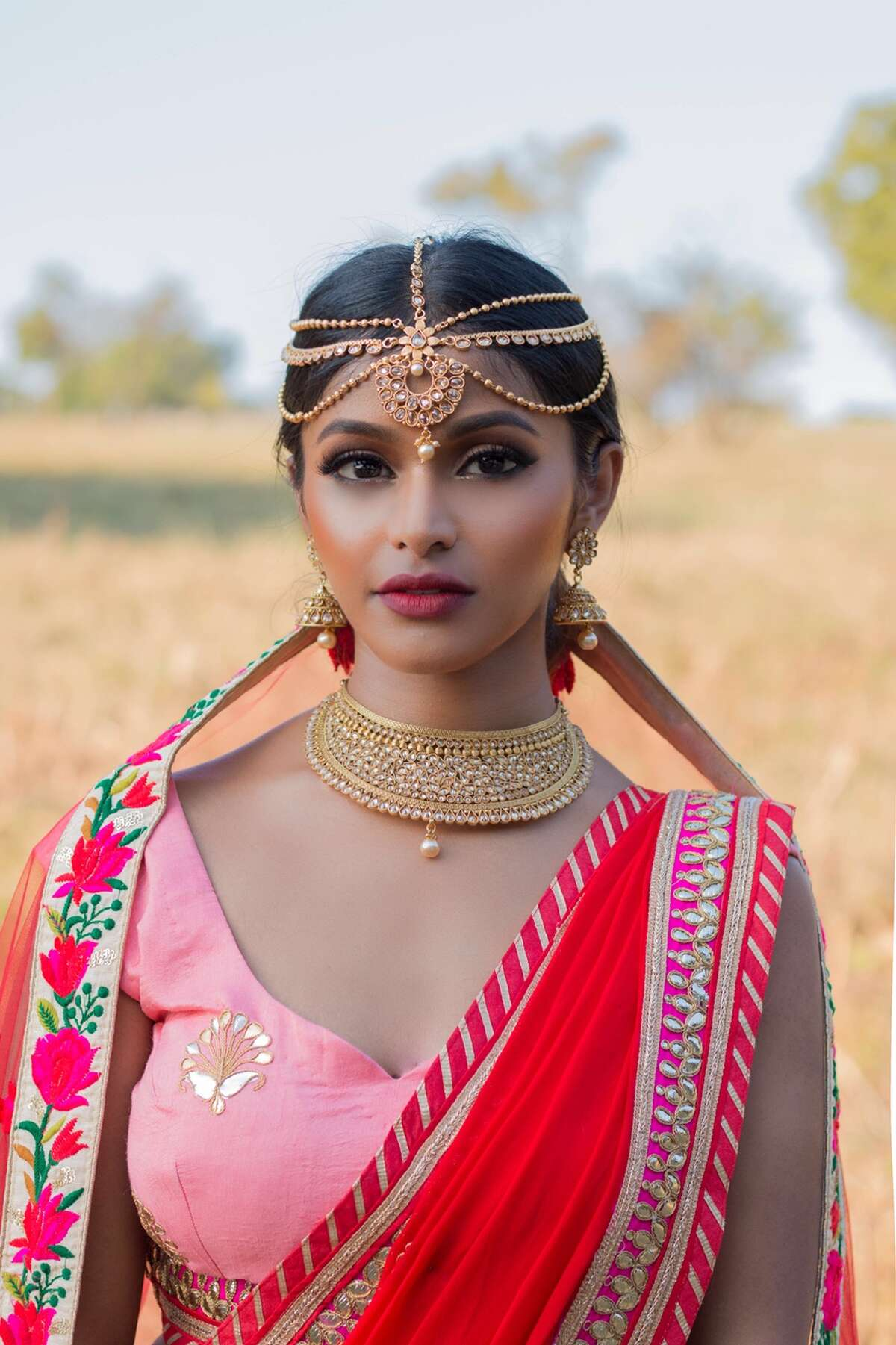 Dallas resident and model Sruthi Jayadevan flawlessly shuts down social media trolls demanding she tones down her Indian style. Her response? More photos appreciating her culture.