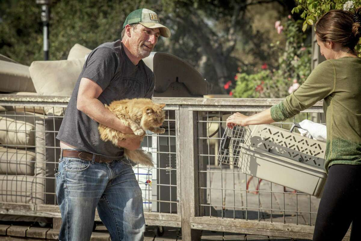 Drew Olin, prepares to load his parents cat Golden in to a pet carrier held by his wife Grenada, after he was left behind when they first evacuated from their home along Lovall Valley Rd. east of Sonoma, California, USA 14 Oct 2017.