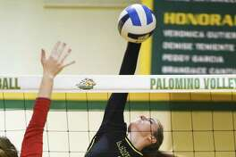 Laredo Community College outside hitter Emily Morley and the Palominos swept Wharton County Junior College 3-0 on Saturday afternoon at Maravillo Gym.