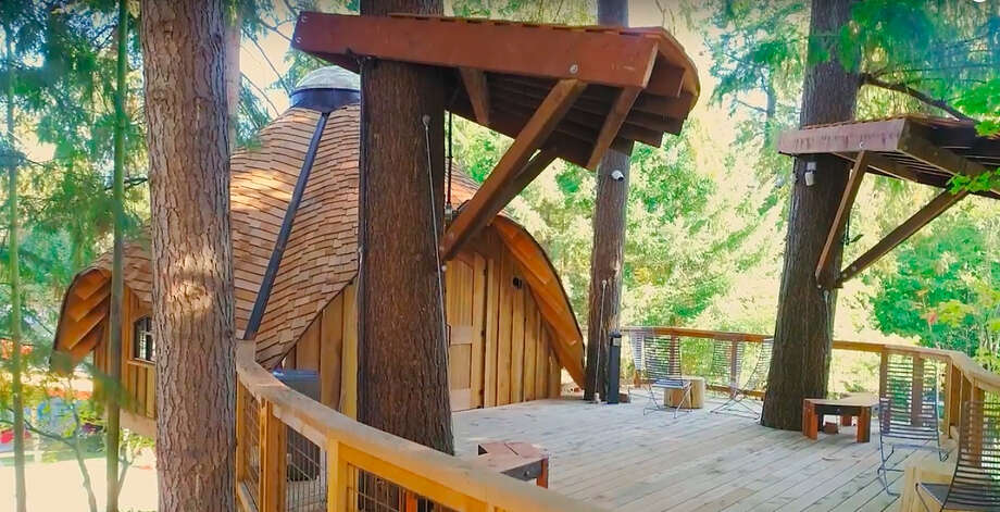 One tree house, nestled in the bows of a Pacific Northwest Douglas Fir on the company's Redmond, Washington, campus. Photo: Microsoft