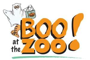 Connecticut's Beardsley Zoo will host its annual BOO at the Zoo on Sunday, October 29 from noon to 3 p.m. This afternoon will include goodies, story-time, and activities for your little monsters along with harvest hayrides and seasonal enjoyments for the whole family. Image courtesy of Connecticut's Beardsley Zoo.