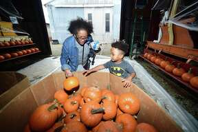 Gerri Duggan of Middletown picks out a pumpkin with her grandson, London Harvey, 3, at the Shore Line Trolley Museum's Pumpkin Patch event in East Haven on October 15, 2017.