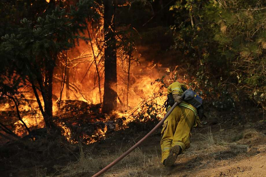 A firefighter carries a water hose to put out a fire near Calistoga on Friday. The raging fire claimed the life of Michael Dornbach, 57, who had hoped to move to the area. Photo: Jae C. Hong, Associated Press