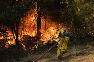 A firefighter carries a water hose to put out a fire during along the Highway 29 Friday, Oct. 13, 2017, near Calistoga, Calif. Firefighters gained some ground on a blaze burning in the heart of California's wine country but face another tough day ahead with low humidity and high winds expected to return. (AP Photo/Jae C. Hong)