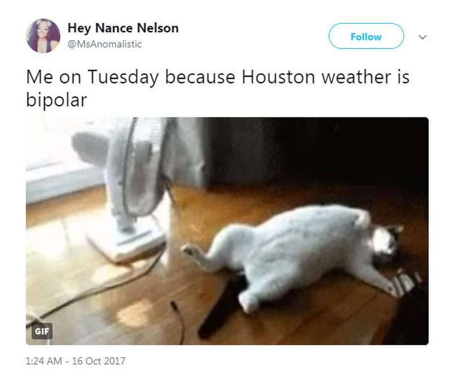 """Me on Tuesday because Houston weather is bipolar""Source: Twitter Photo: Twitter"