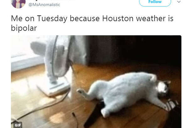 """Me on Tuesday because Houston weather is bipolar""  Source:  Twitter"