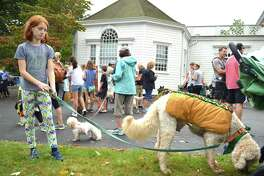Grace Hind, 10, of Fairifled and her pal Bubba relax after walking in the dog parade, which was held as part of the Fairfield Chamber of Commerce's annual Fall Market at Town Hall Green, Sunday, Oct. 15, 2017, in Fairfield, Conn.