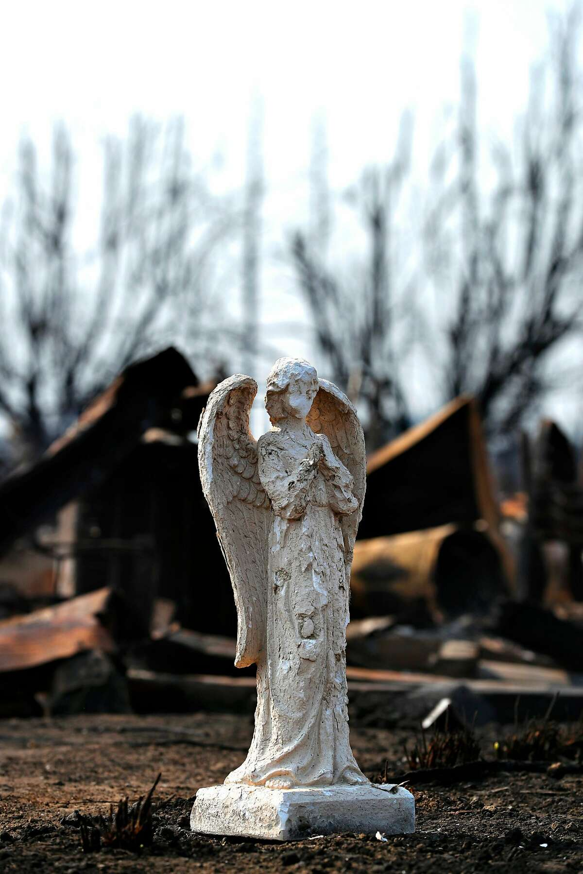 An angel statue stands in front of destroyed homes in the Coffey Park neighborhood, a week after the start of the massive fires in Santa Rosa as seen on Monday October 16, 2017.