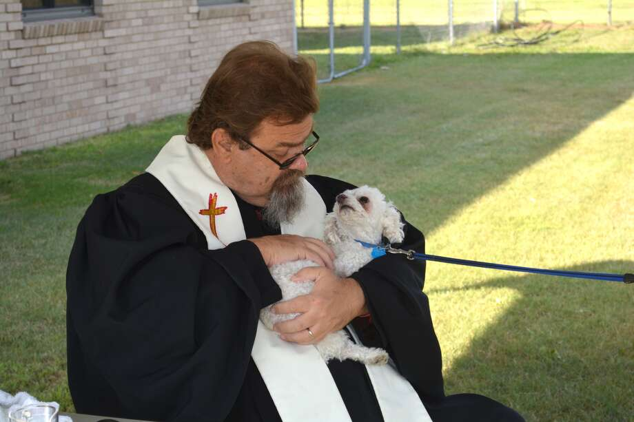 Curie, the pet of David and Elise Adamson, looks up at the Rev. David Hawkins, pastor of First Presbyterian Church, on Saturday ask he offers a blessing for the companion animal. The congregation on Saturday held its second annual Blessing of the Animals with scores of animals receiving individual blessings. During the first hour most blessings were extended to dogs that were either brought in by owners or representatives of Paws Pet Adoption of Plainview. Hawkins said in addition to traditional pets, last year he extended blessings to two horses, a rabbit, a chicken and the West Texas A&M buffalo mascot which was represented by a photo. The buffalo was absent again this year due to a conflict with WTAMU Homecoming. According to Elise Adamson, a chemistry professor at Wayland, Curie is almost 5 years old and named for Marie Curie, the French physicist and chemist known for her pioneering research into radioactivity.