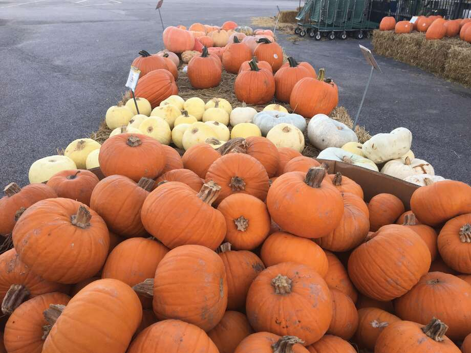 Pumpkins, in a variety of sizes and colors, are on display at Joe's Market Basket on South Buchanan Street. Today's 43 degree temperature at 8 a.m. – like the pumpkins – was a reminder that fall is finally here. Photo: Bill Tucker • Btucker@edwpub.net