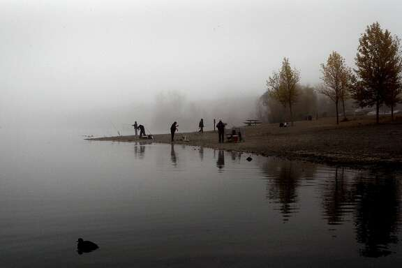 Fisherman along the shores of Shadow Cliffs Regional Park, in Pleasanton, Calif., on Thursday Nov. 13, 2008.  With the lake being stocked with 2,000 pounds of fish this week, anglers were catching fish one after another as the morning fog began to break up.