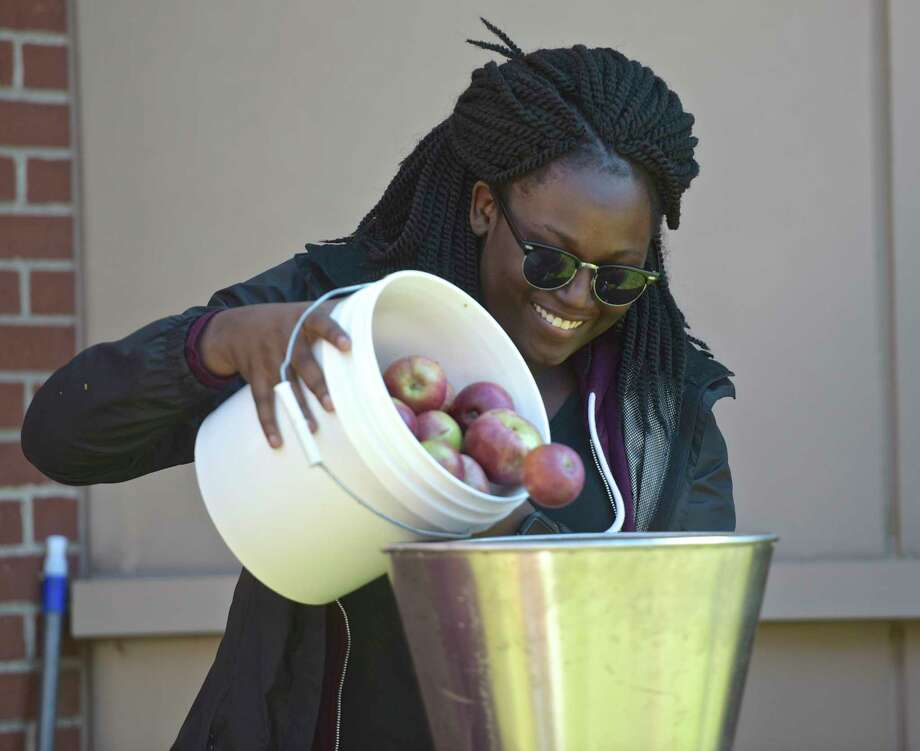 Zee Doukoure, from New York, NY, a psychology major at Western Connecticut State University, adds apples to a grinder in front of the student center on the Midtown campus. Biology Professor C. Thomas Philbrick holds a cider making event for his class every fall where they take 600 pounds of apples and turn them into cider during the three hour class. Free samples were given away. October 17, 2017, in Danbury, Conn. Photo: H John Voorhees III, Hearst Connecticut Media / The News-Times