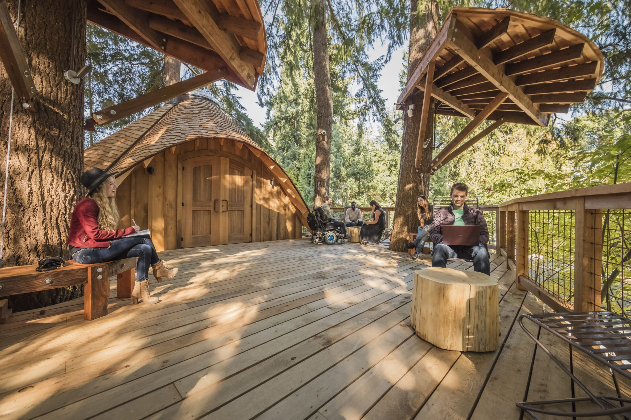Check out Microsoft's new tree house meeting spaces
