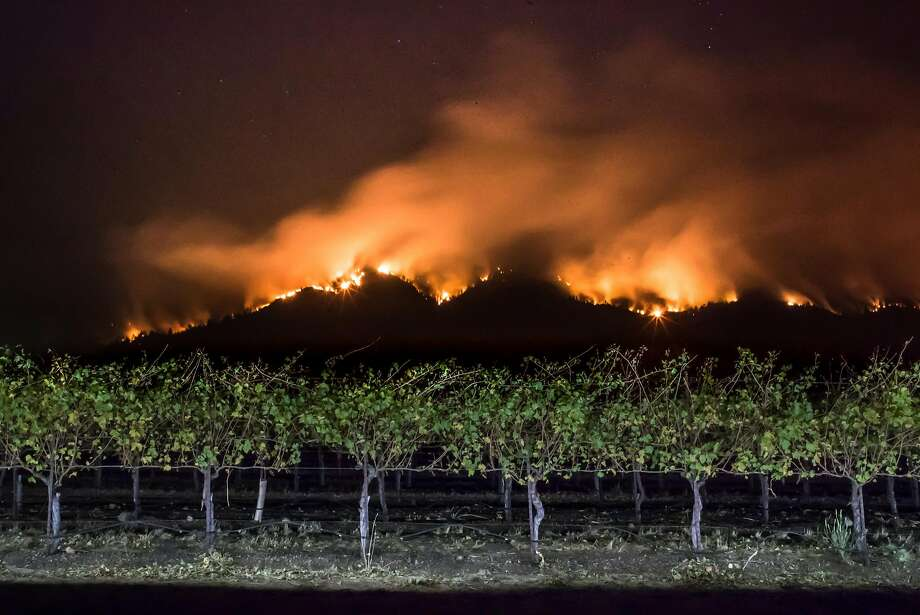 Fire burns along the ridge near a field of grape vines near Oakmont in October. A PG&E memo sent to state regulators details the steps the company took to get ready for the wind storm that fanned the Wine Country fires. Photo: Paul Kuroda, Special To The Chronicle