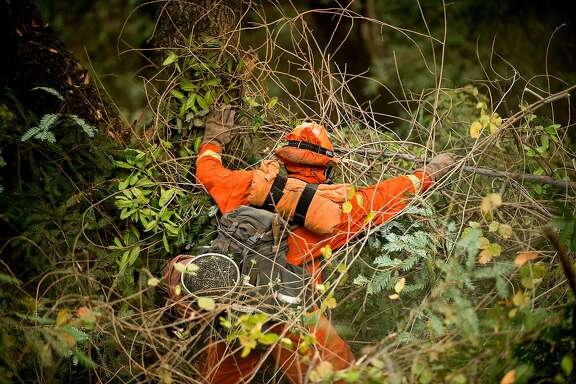 An inmate firefighter clears brush on Bear Creek Canyon Road as the Bear fire approaches in Boulder Creek, Calif., on Tuesday, Oct. 17, 2017