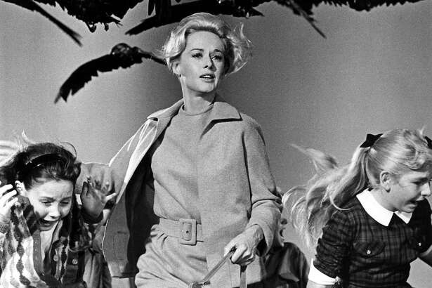 Scene from Alfred Hitchcock's 'The Birds,' starring Tippi Hedren (center).