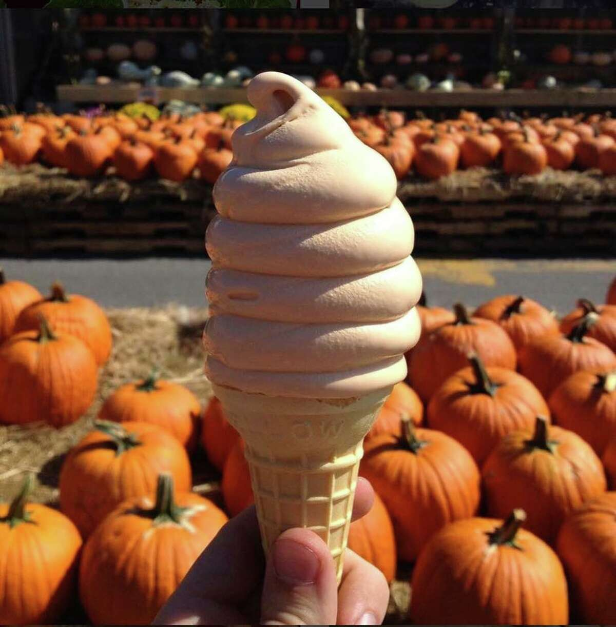 Pumpkin soft serve With Stew Leonard's locations in Danbury, Norwalk and Newington, pumpkin lovers throughout Connecticut can get their fix with pumpkin soft serve.