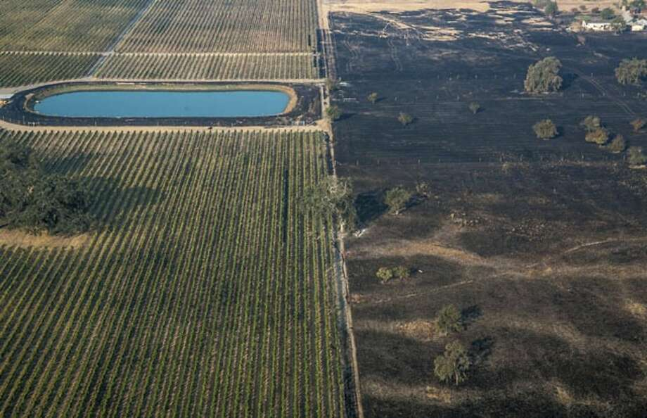 In this Wednesday, Oct. 11, 2017, aerial photo provided by George Rose shows a lush vineyard, left, next to a scorched wasteland near Vintners Inn, just north of Coffey Park, Sonoma County near Santa Rosa, Calif. Officials say progress is being made in some of the largest wildfires burning in Northern California but that the death toll is almost sure to surge. (George Rose/Georgerose.com via AP) Photo: George Rose, Associated Press