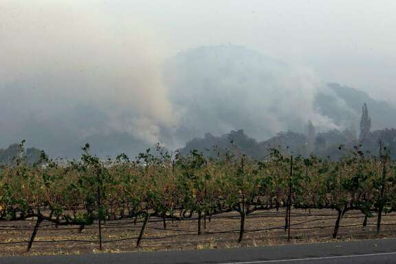 Plumes of smoke rise from a mountain behind a vineyard at Chateau St. Jean in Kenwood, Calif., Tuesday, Oct. 10, 2017. (AP Photo/Jeff Chiu)