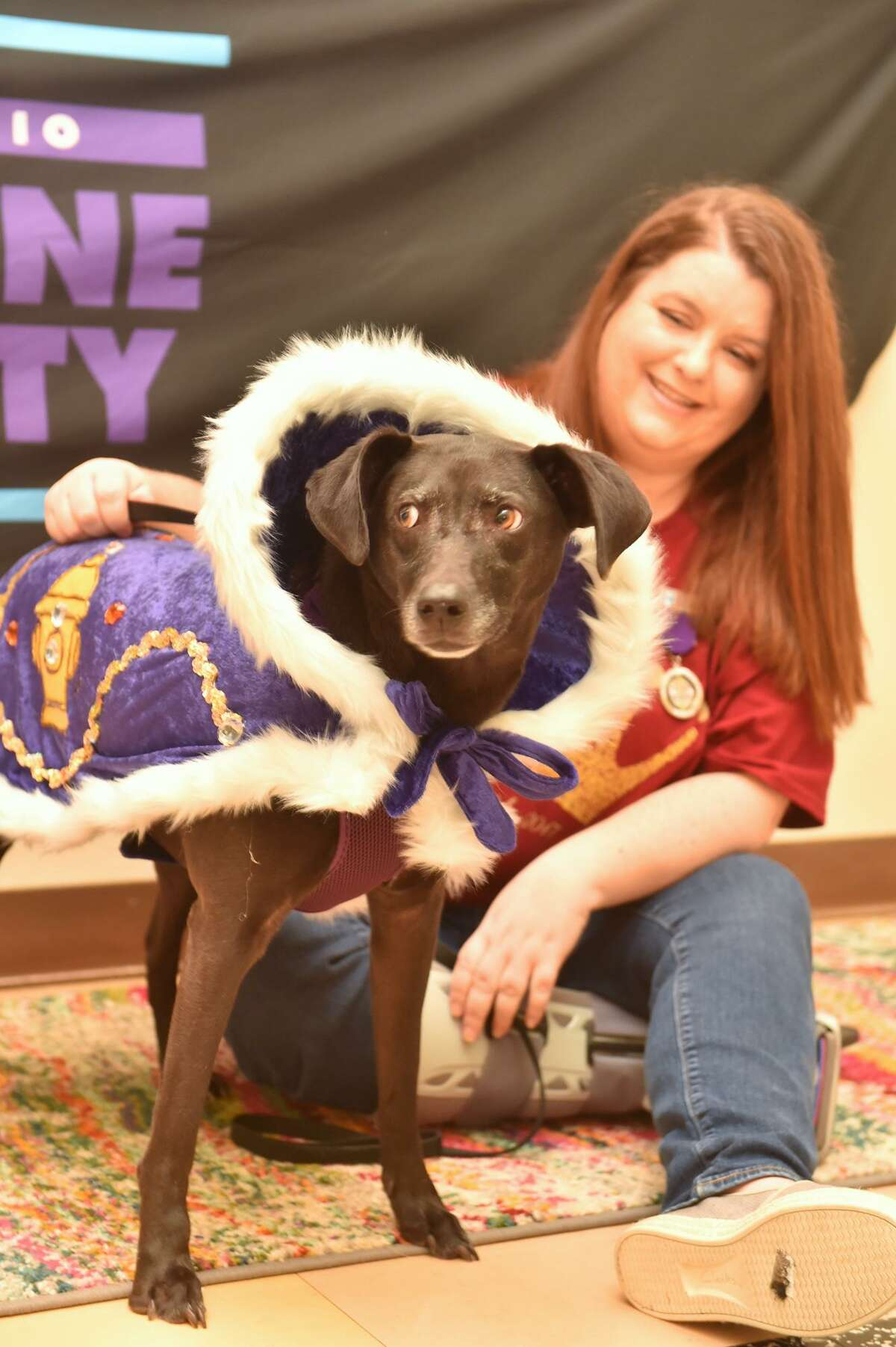 """Employees of the San Antonio Humane Society said their jobs made them feel """"part of something meaningful."""" The Humane Society announced earlier this year that Andy Wheeler, a dog owned by Elizabeth Wheeler, earned the title """"Duke of the Chew Toy."""""""