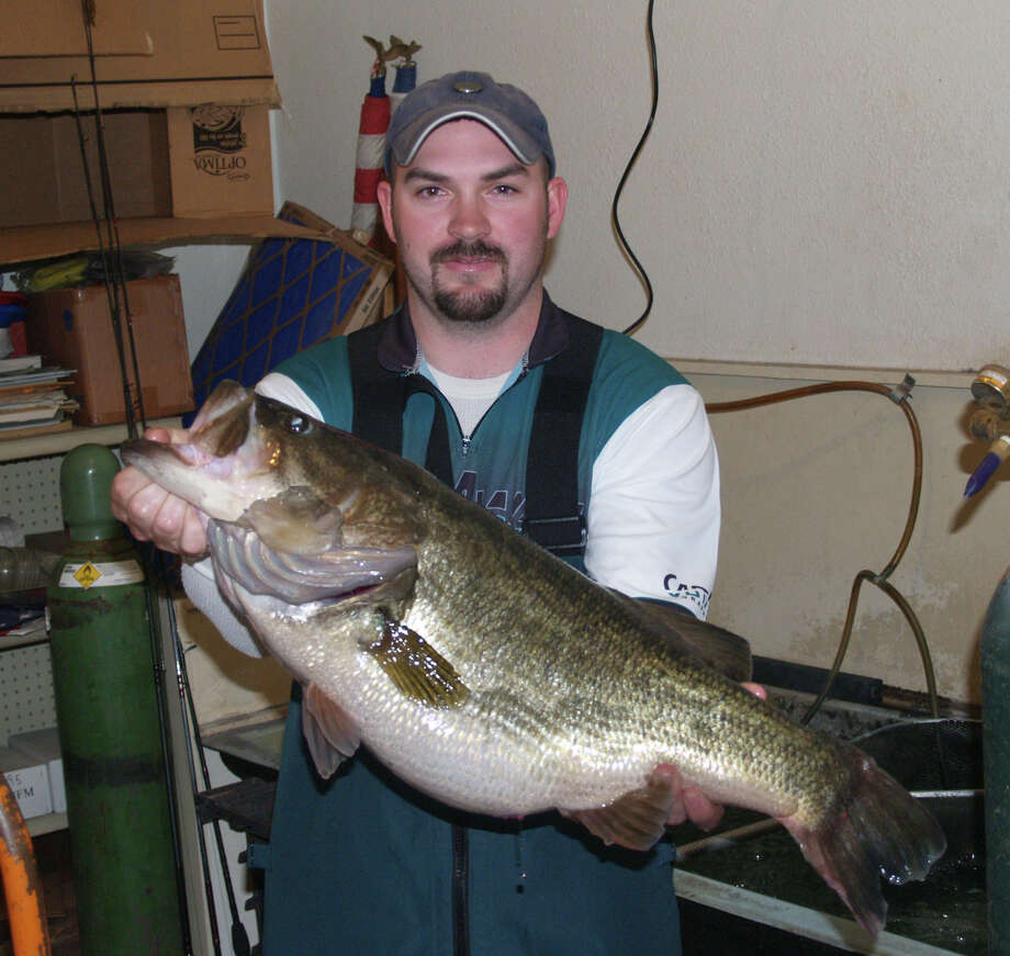 Ricky Bearden II holds his Lake Conroe record ShareLunker the day he caught it. It was being kept in a holding tank at Stow-A-Way Marina. Photo: Larry J. LeBlanc