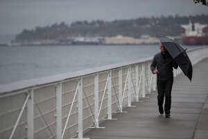 A man shields himself from the rain with an umbrella as he walks along the Elliott Bay Trail on Wednesday, Oct. 18, 2017.