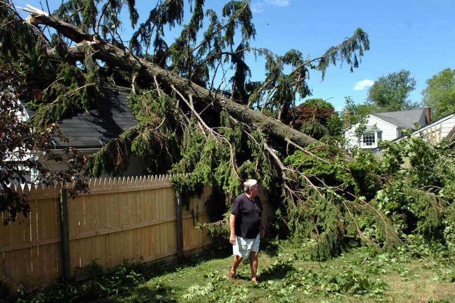 Walter Jennings surveys the storm damage in his daughter's backyard on 1st Ave., in the Lordship neigborhood of Stratford, Conn. Friday morning, June 25th, 2010. All of Lordship was without power Friday following Thursday's severe storm. Photo: Ned Gerard / Connecticut Post