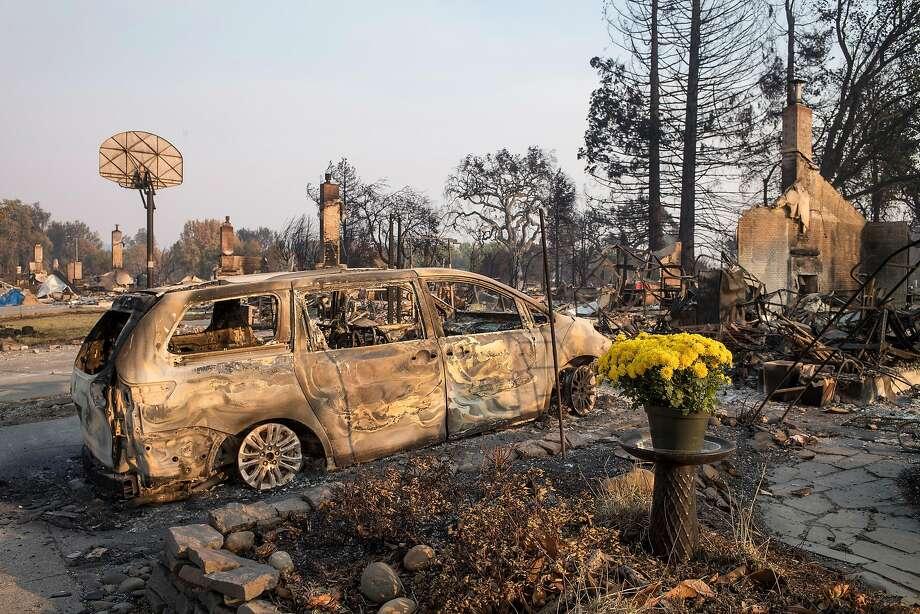 Fresh flowers stand in front of burned residences in Santa Rosa. Photo: David Paul Morris, Bloomberg