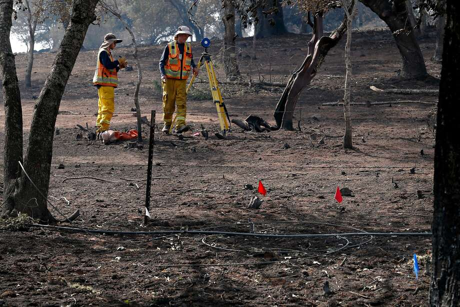 Investigators search for the cause of the Atlas Fire along Atlas Peak Road. Photo: Michael Macor, The Chronicle