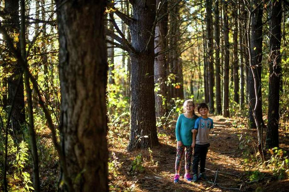 local family hosts haunted forest walk