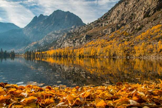 """Josh Wray told CaliforniaFallColor.com the June Lake Loop, """"Is the brightest I've ever seen it, particularly at Silver Lake, and in between Grant Lake and Silver Lake."""""""