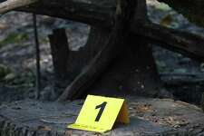 Investigators placed numbered markers as they searched for the cause of the Nuns Fire along Nuns Canyon Road in Glen Ellen.