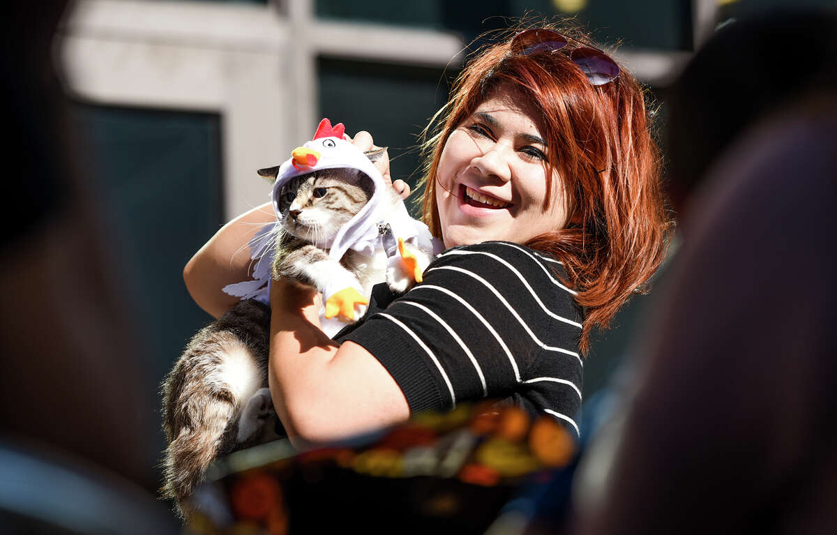 Pets participate in a costume contest on Saturday, Oct. 21, 2017, at Flip Flop Coffee Shop