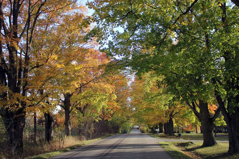 The fall colors recently peaked in the Upper Thumb. Photo: Tribune Staff Reports