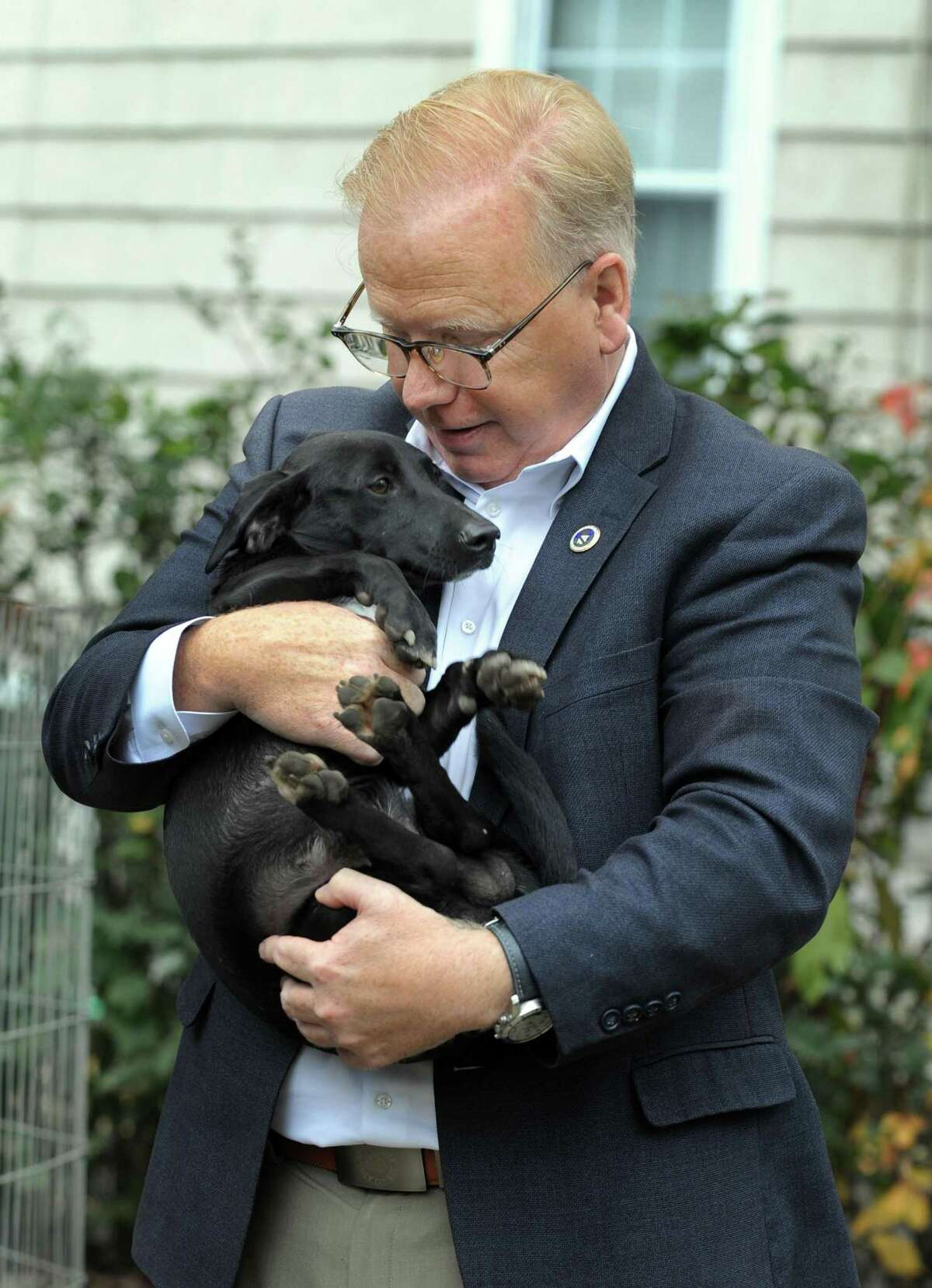 Danbury Mayor Mark Boughton cuddles with a labrador puppy rescued from Puerto Rican by Tails of Courage, on Smith Street in Danbury, Tuesday, Oct. 24, 2017.