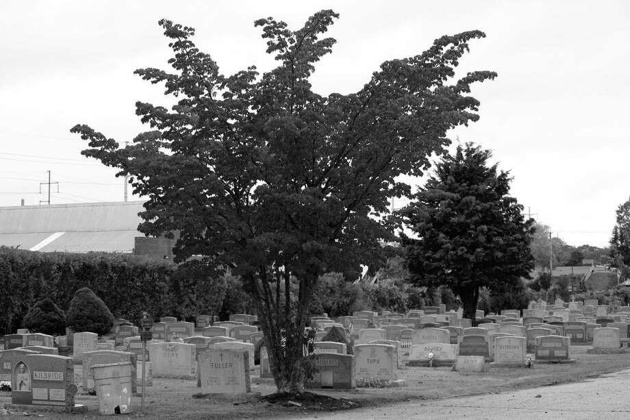 Grav stones at St. Thomas Cemetery in Fairfield, Conn. Photo: Justin Papp / Hearst Connecticut Media / Fairfield Citizen