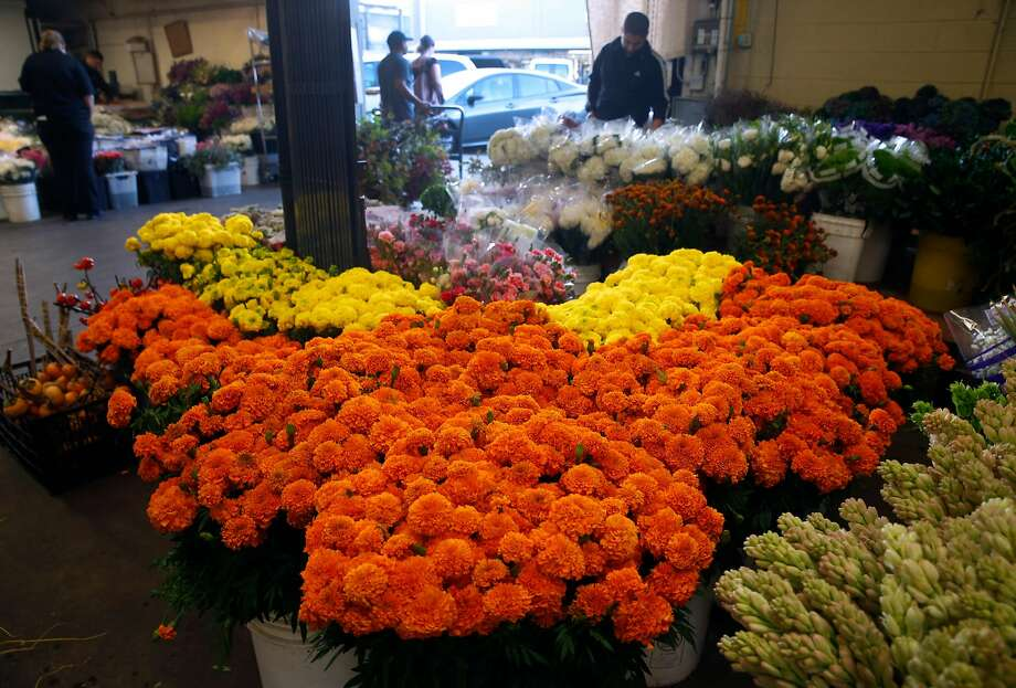 Marigolds in traditional orange and yellow ar for sale by Lupe Farm in the San Francisco Flower Mart. Photo: Paul Chinn, The Chronicle